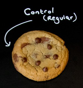 Cookie Experiment - a visual and taste test using a control cookie and 8 minor changes to ingredient or technique
