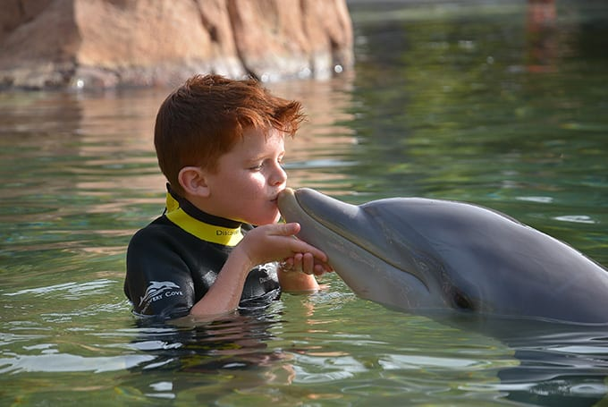 Lewis with a dolphin