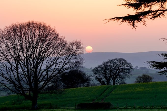 Sunrise from Croydon hall. Large tree in foreground.