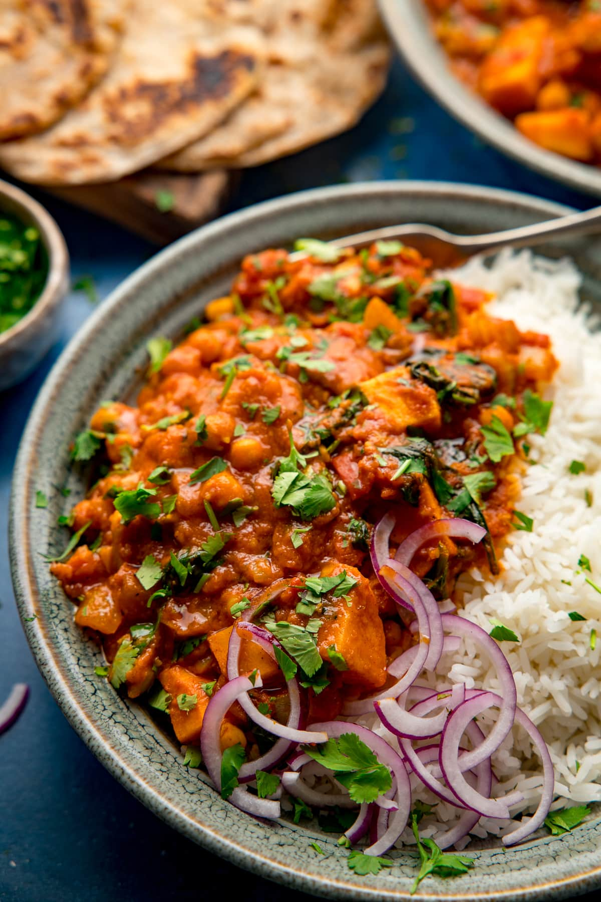 Close up of a bowl of chickpea and sweet potato curry with boiled rice