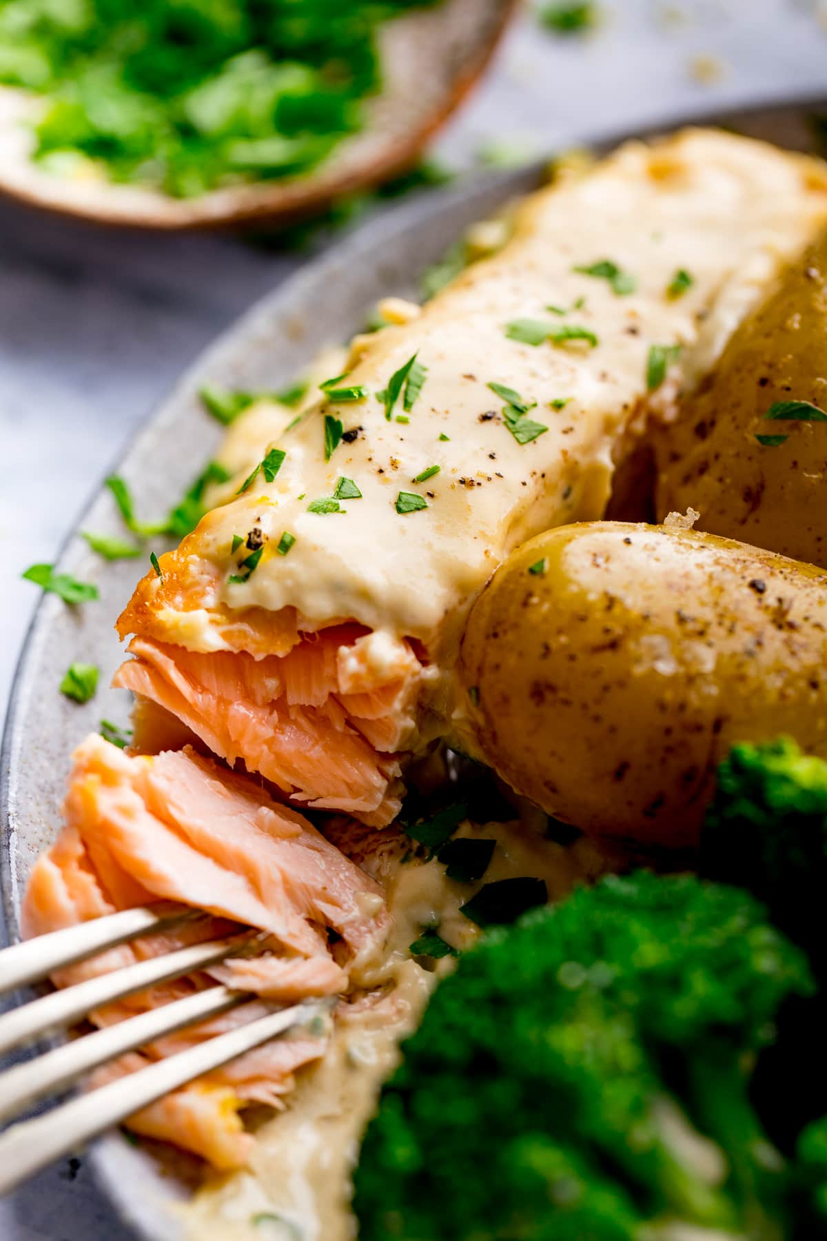 Close up of a piece of salmon in creamy sauce being flaked with a fork