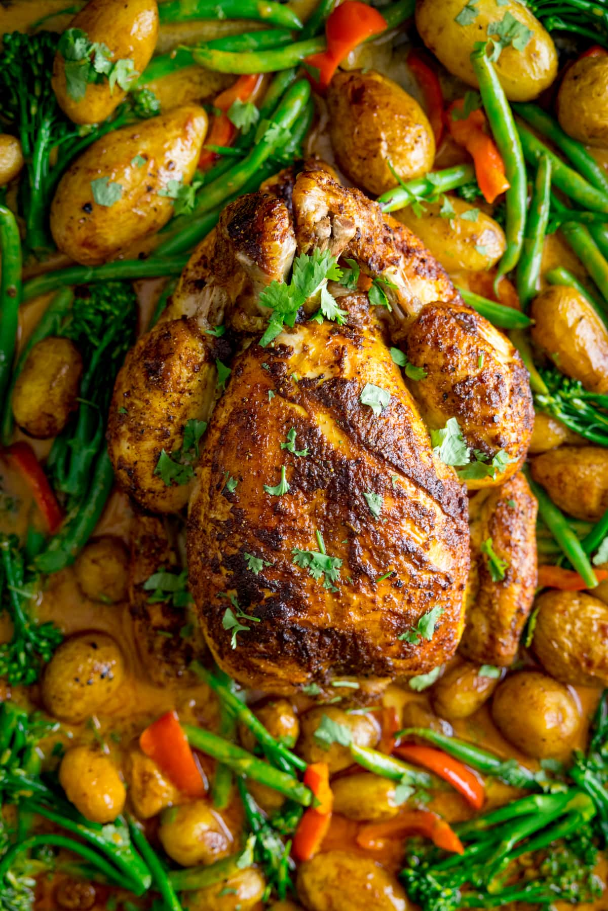 Overhead of a whole roast chicken in a baking tray with vegetables and curry sauce
